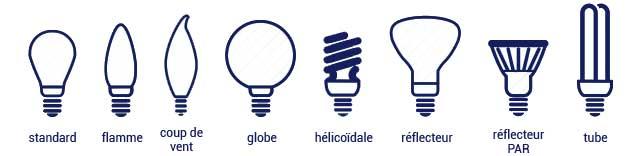 Les différentes formes d'une ampoule