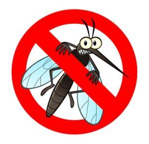 les moustiques sont un danger pour la santé