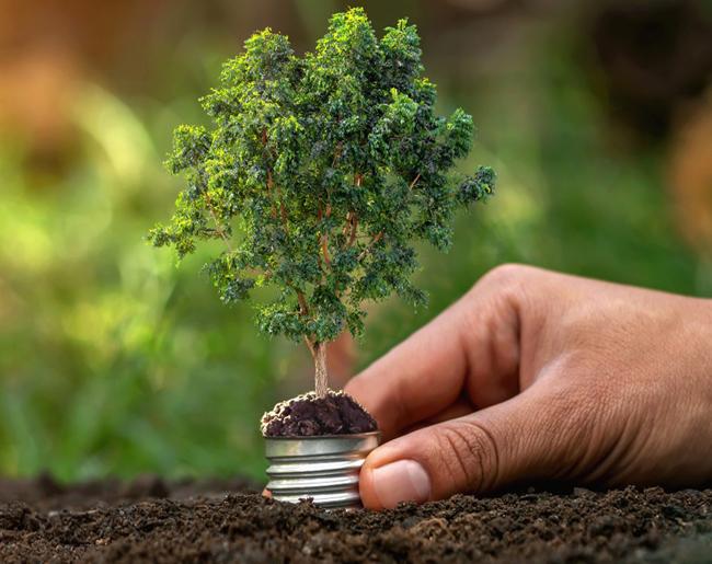 Sylvania réduit l'impact environnemental de ses produits grâce à de nouveaux packagings 100% éco-responsables